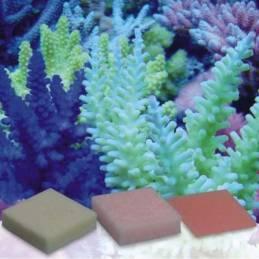 Automatic Elements Potasio Iodo Flúor Concentrado Zeovit