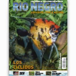 Rio Negro nº 29