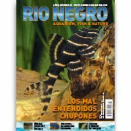 Rio Negro nº 27