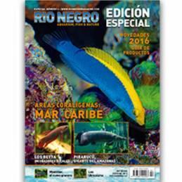 Rio Negro Especial nº 2