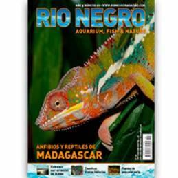 Rio Negro año 5 nº 26