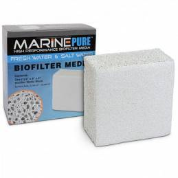 MARINE PURE Bloque 20x20x10cm