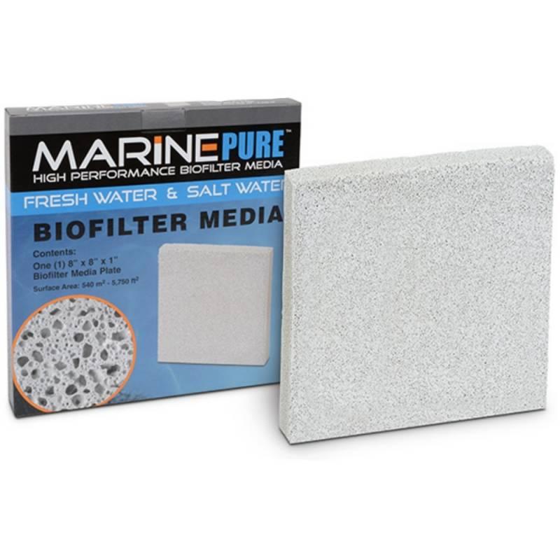 MARINE PURE plate 20x20x2,5cm