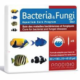 Bacteria  Fungi Prodibio