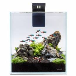 Acuario Nano Set 10 litros AquaLighter