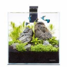 Acuario Pico Set 5 litros AquaLighter