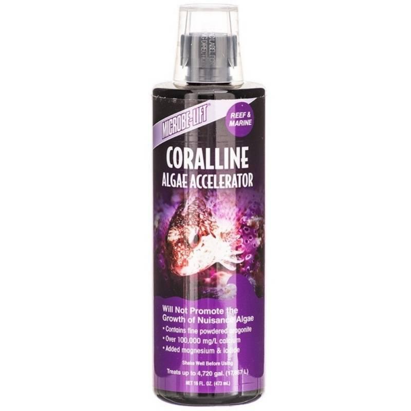 Coralline Algae Accelerator Microbe-Lift