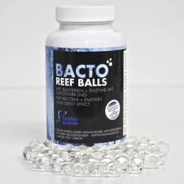 Bacto Reef Balls Fauna Marin