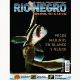 Rio Negro nº 30