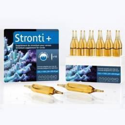 STRONTI + de 12 ampollas Prodibio