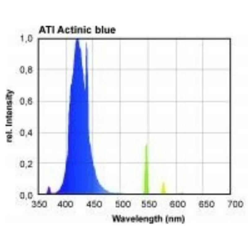 ATI T5 ACTINIC