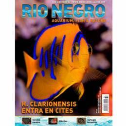 Rio Negro nº 32