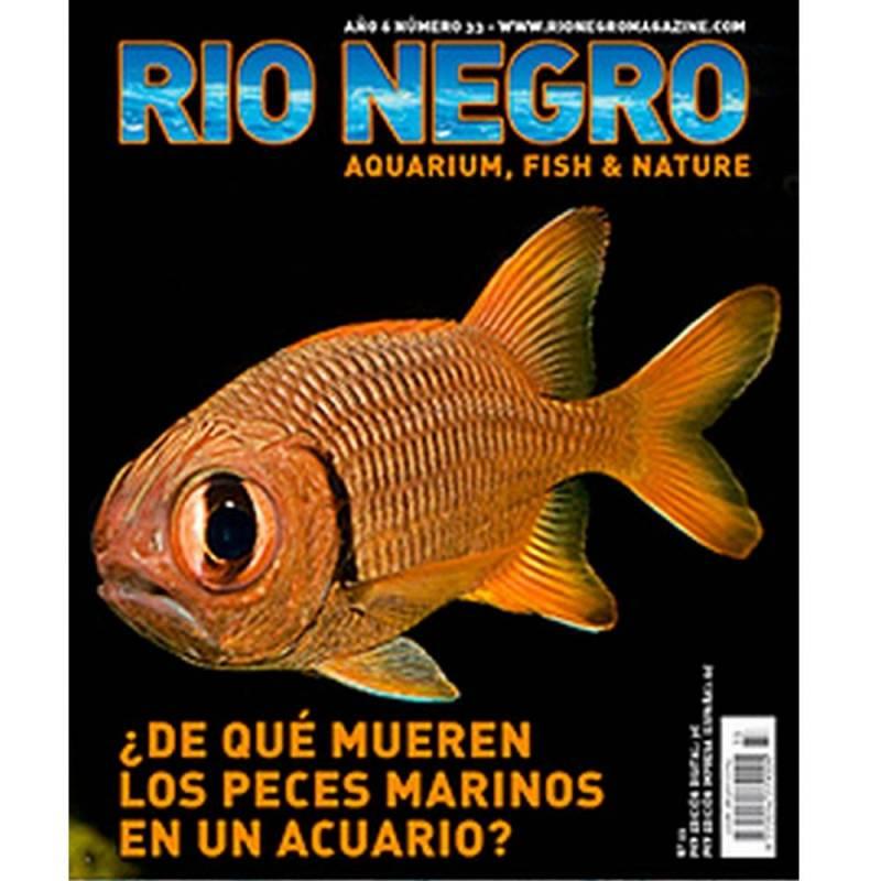 Rio Negro nº 33