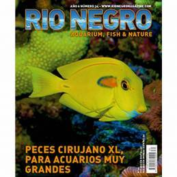 Rio Negro nº 34