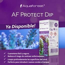 AF Protect DIP Aquaforest