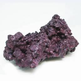 Reef Rock 2.1