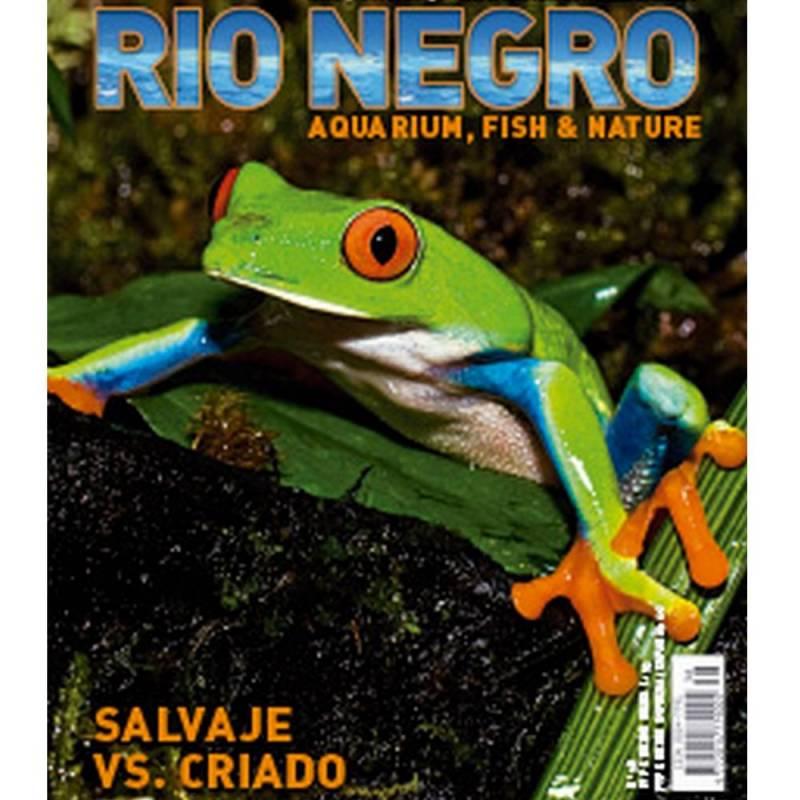 Rio Negro nº 38