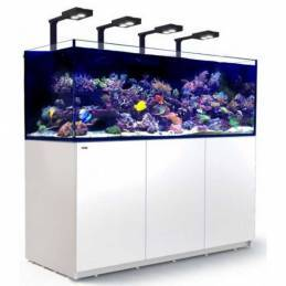 Kit Acuario Reefer Deluxe...